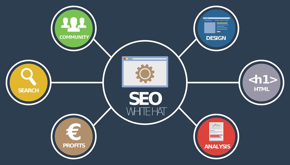 תחומי הפעילות בSEO קידום אתרים